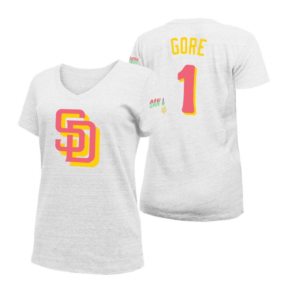 Philadelphia Phillies #34 Roy Halladay Mitchell & Ness 2019 Hall of Fame Graphic T-Shirt Gray